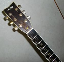 Cimg8081